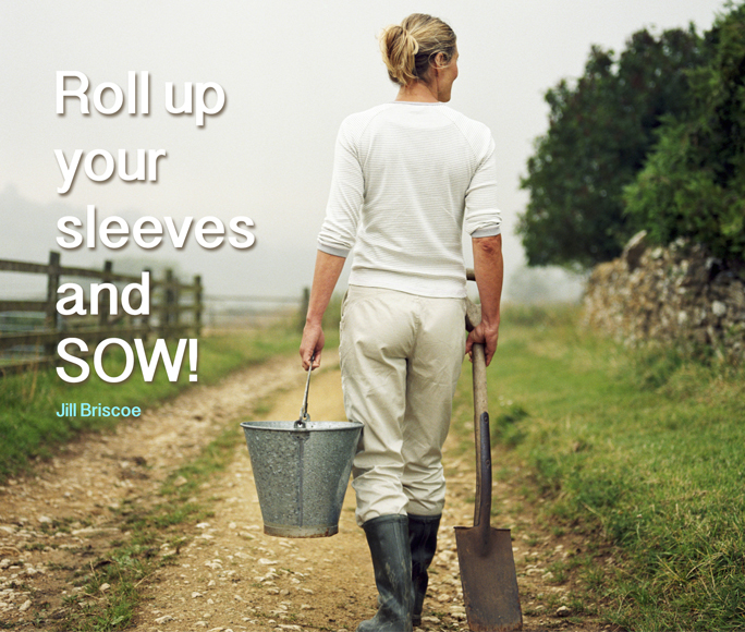 Roll Up Your Sleeves and Sow
