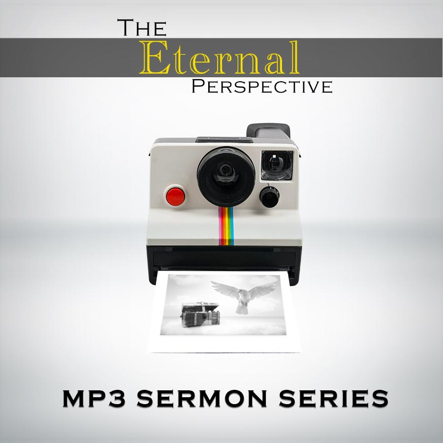 The Eternal Perspective - MP3 Series