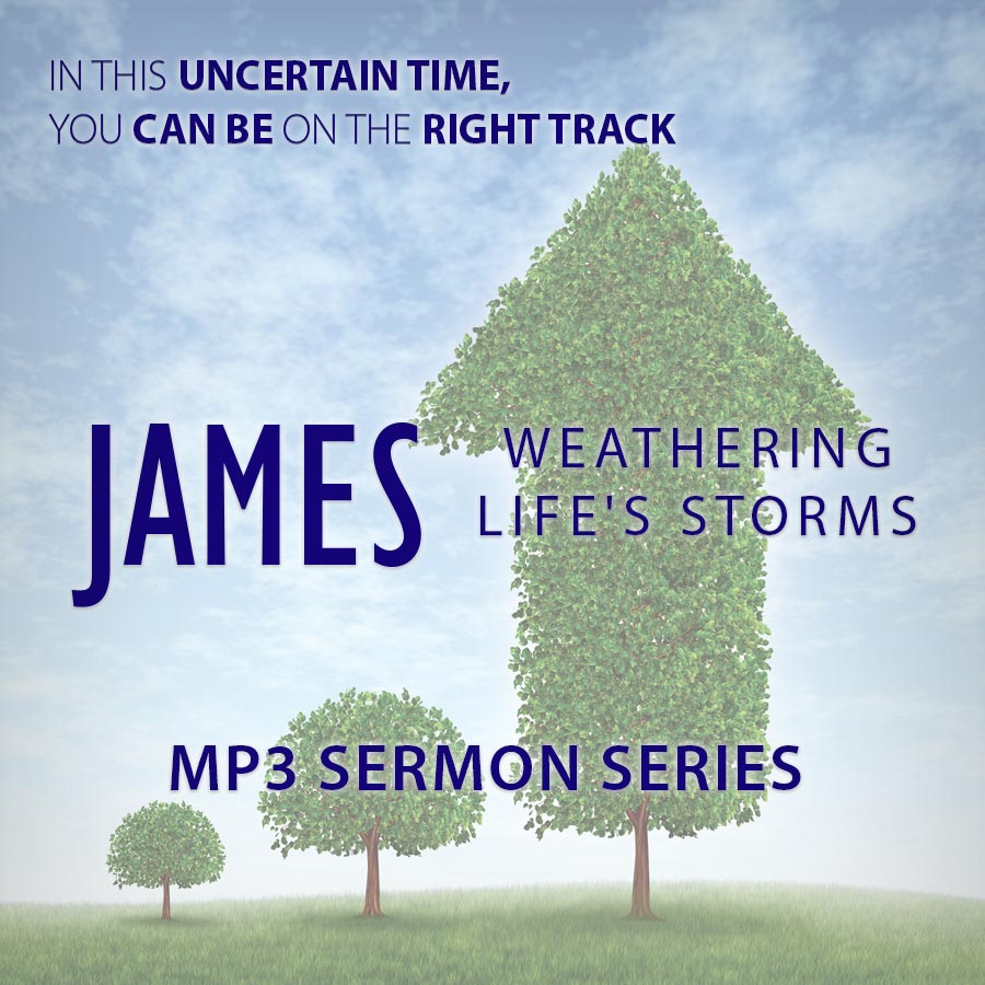 James: Weathering Life's Storms Vol. 1 & 2 - MP3 series
